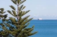 Cottesloe Samsara Apartment  - Other - holiday accommodation rentals for short  term stays in Perth