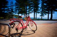 The Cottesloe Artist's Retreat - Outdoor Area - holiday accommodation rentals for short term stays in Perth